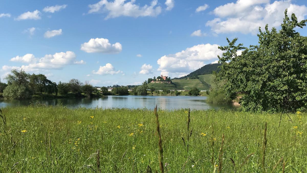 Blick auf Schloß Ortenberg